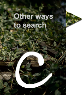 Other ways to search